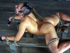 Pony girl tied up